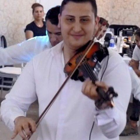 vioara 2